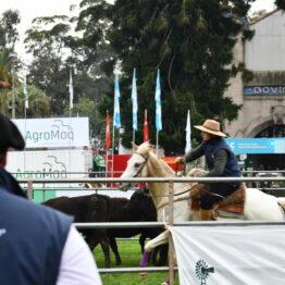 Dia 2 - Expo Prado 2021 (92)