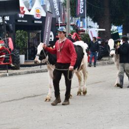 Dia 4 - Expo Prado 2021 (165)