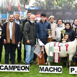 Dia 4 - Expo Prado 2021 (62)