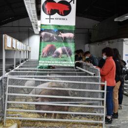 Dia 5 - Expo Prado 2021 (97)