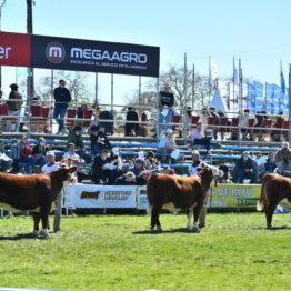 Dia 6 - Expo Prado 2021 (17)