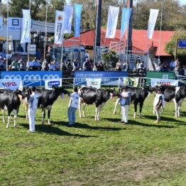 Dia 7 - Expo Prado 2021 (112)