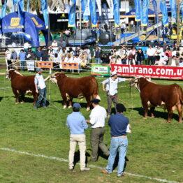 Dia 7 - Expo Prado 2021 (114)