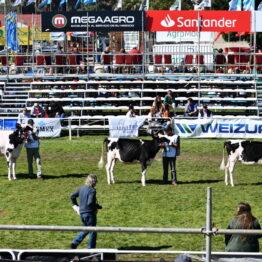 Dia 7 - Expo Prado 2021 (18)