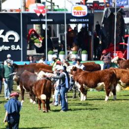 Dia 7 - Expo Prado 2021 (19)