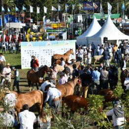 Dia 8 - Expo Prado 2021 (132)