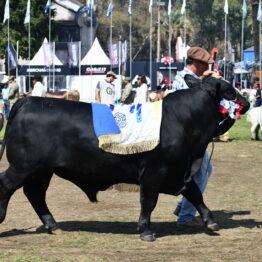 Dia 9 - Expo Prado 2021 (109)