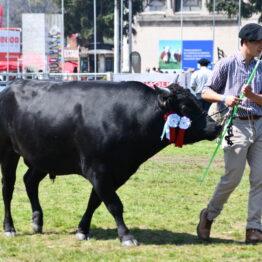 Dia 9 - Expo Prado 2021 (112)