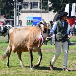 Dia 9 - Expo Prado 2021 (124)