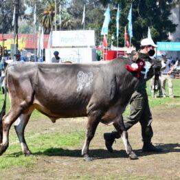 Dia 9 - Expo Prado 2021 (127)