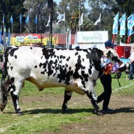 Dia 9 - Expo Prado 2021 (129)