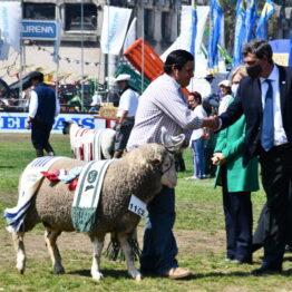 Dia 9 - Expo Prado 2021 (158)
