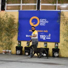 Dia 9 - Expo Prado 2021 (245)
