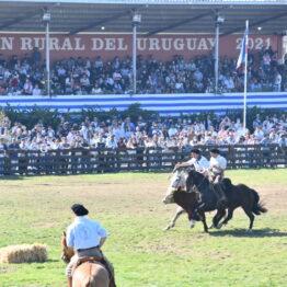 Dia 9 - Expo Prado 2021 (265)