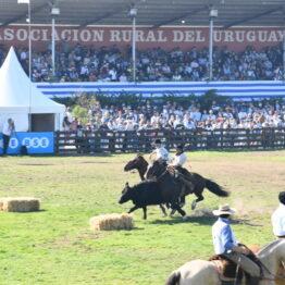 Dia 9 - Expo Prado 2021 (267)
