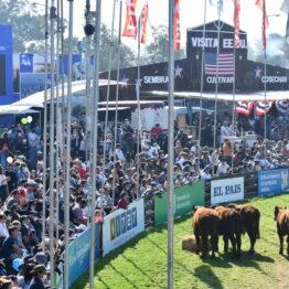 Dia 9 - Expo Prado 2021 (271)