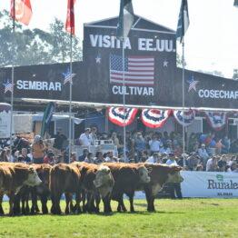 Dia 9 - Expo Prado 2021 (272)