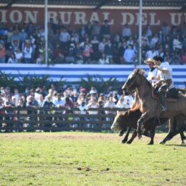 Dia 9 - Expo Prado 2021 (273)