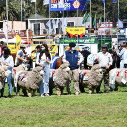 Dia 9 - Expo Prado 2021 (57)