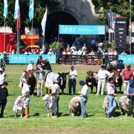Dia 9 - Expo Prado 2021 (80)