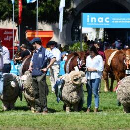 Dia 9 - Expo Prado 2021 (86)