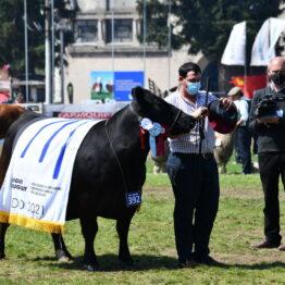 Dia 9 - Expo Prado 2021 (94)