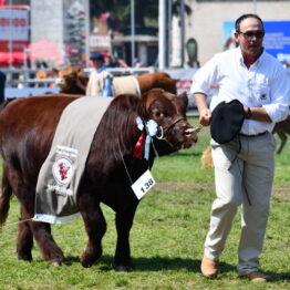 Dia 9 - Expo Prado 2021 (95)