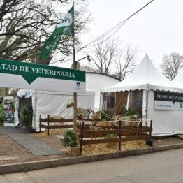 Stands Expo Prado 2021 (23)