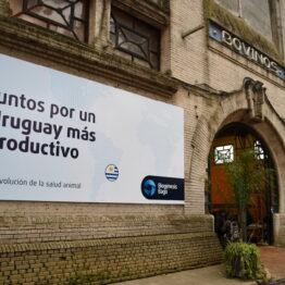 Stands Expo Prado 2021 (41)