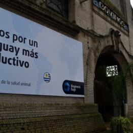 Stands Expo Prado 2021 (54)