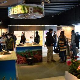 Stands Expo Prado 2021 (95)